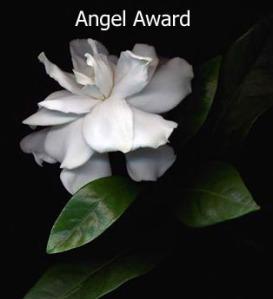 doncharisma-org-award-angel_edited-1
